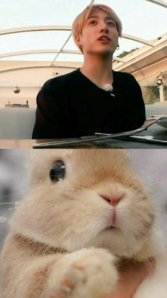 #jungkook #bunny Bts Bangtan Boy, Bts Jungkook, K Pop, Bts Pictures, Photos, Bts Face, Idole, Googie, About Bts