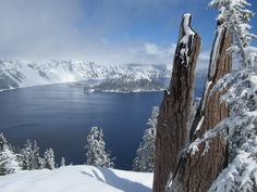 Crater Lake Oregon. The deepest lake in the United States [4000x3000] [OC] -Please check the website for more pics