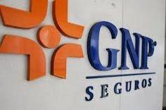 """REDACCIÓN"""" La Noticia con Verdad"""": GNP SEGUROS EXTIENDE SU PROGRAMA DE ACOMPAÑAMIENTO..."""