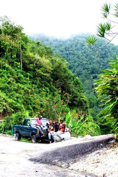 Blue Mountains, Jamaica. Find the best spots in #Jamaica in the #travel #guidebook 'Explore Jamaica the Natural Rasta Way' by @sandra8282 https://www.favoroute.com/guide/297/explore-the-real-jamaica-in-the-natural-rasta-way