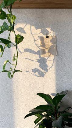 How to Skandi 4 rules for Nordic design fridlaa Plant Aesthetic, Sky Aesthetic, Aesthetic Rooms, Aesthetic Photo, Aesthetic Pictures, Aesthetic Pastel Wallpaper, Aesthetic Backgrounds, Aesthetic Wallpapers, Plant Wallpaper