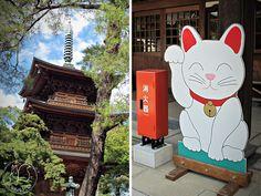 Oravanpesä | Japani 2011, Gotokuji.