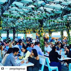 Monday blues! We love this lighting from last years event! @pergolagroup #events #eventprofs #visionsgroup #lighting #creative #pergolaontheroof #summer by visionsgroup100.  summer #lighting #visionsgroup #eventprofs #creative #pergolaontheroof #events