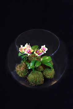 Orchids and moss balls come together in a globe vase for look that is modern yet rustic.