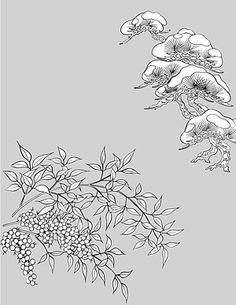 line drawing of plant flowers vector material