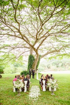 Beautiful ceremony at our neighbors- The National Tropical Botanical Gardens wedding.