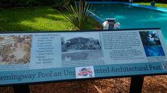 Hemingway's swimming pool!