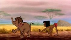 "All time favourite Disney movie ""Take each lesson one step at a time"" - The Jungle Book Baby Elephant Pictures, Cute Baby Elephant, Funny Babies, Cute Babies, All Disney Movies, Disney Characters, Cartoon Elephant, Elephant Stuff, Disney Shows"