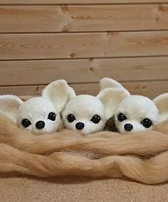 Beautiful Needle felting wool cute dogs chihuahua(Via @quu_mama)