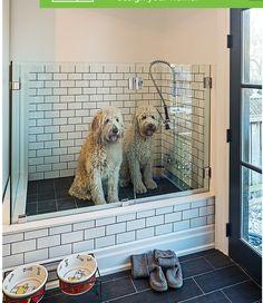 Great indoor shower for Fido!