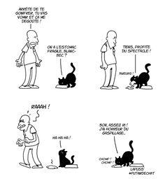 Top 11 des illustrations sur la vie secrète des chats par Lapuss, ces bêtes sont des enflures
