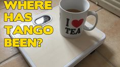 Tango talks - why no recent videos, previous depression and trying to lo...