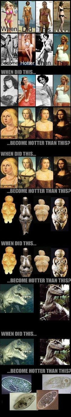 The definition of hotness throughout the millennia. Hahahaha so dumb but so funny since it ends with what I learn in biology on how life began haha Lol, Haha Funny, Funny Cute, Funny Memes, Hilarious, Jokes, Crazy Funny, Funny Stuff, Humor Grafico