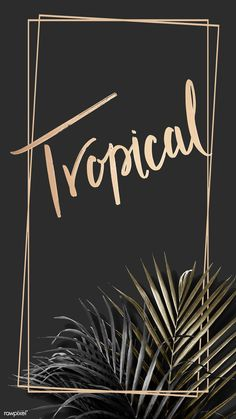 Rectangle golden frame on a tropical background vector | premium image by rawpixel.com / Adj / HwangMangjoo / marinemynt Tropical Background, Leaf Background, Background Patterns, Pool Images, Beach Images, Framed Wallpaper, Mobile Wallpaper, Vector Can, Vector Free