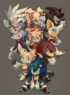 Sonic and his friends: Tails, Knuckles, Cream and Cheese, Shadow, Rouge, Silver, Blaze, and Amy.