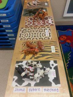 Animal pattern matching for toddlers jungle animals Preschool Jungle, Preschool Science, Zoo Activities Preschool, Toddler Classroom, Preschool Classroom, Animal Activities, Toddler Activities, Dear Zoo Activities, Eyfs Activities
