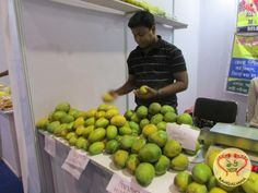 The Bengal Mango Festival 2017 was inaugurated by Abdur Razzak Mollah and Subrata Mukhopadhyay.