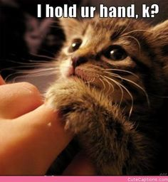 I Hold Ur Hand, K? ( My Robby does that with me, it feels soooo cute !)