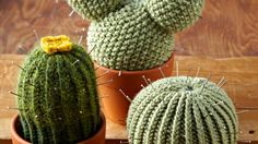 Knit your own succulents: Like the look of cacti but know that your black thumb would find a way to kill even the most indestructible of plants? Knit your own, and you'll never need to worry about overwatering again. This knitted cactus from the Yarn Loop is a mixed-media project. Knit the cactus, stuff it in a small terra-cotta pot, and finish it off with pins to get the pointy cactus look.
