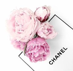 Chanel & Peonies #perfect
