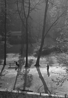 Shadows in the park (I don't know the original source)