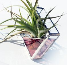 Stained Glass Air Plant Holder - Sconce - Small - Simple, Geometric, Modern - Choose your Color