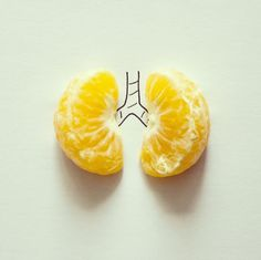 Conceptual photography by Javier Perez- Fotografía conceptual por Javier Perez conceptual photos lungs Conceptual photography of everyday objects combined by drawings by Javier Perez - Creative Illustration, Illustration Art, Creative Photography, Art Photography, Conceptual Photography, Everyday Objects, Simple Art, Simple Lines, Art Plastique
