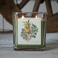Verdure - Bayberry Pineapple