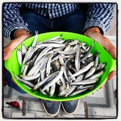 #Rimini#Sardoncini#Pesce Azzurro dell'Adriatico#adriatic sea fish#Picoftheday#Buonissimi!!#Happy Friday eveningmy dear friends!#Buon week-endamici miei!#Romagna mia!#Amazing week-end!!! by gianlucafred