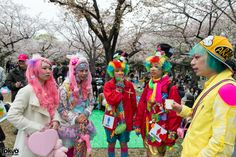 Harajuku fashion kids at a cherry blossom viewing event