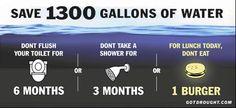 Save 1300 gallons of water #gogreen #govegan Vegan Cowspiracy environmentalism