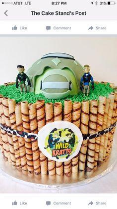 Wild Krats birthday cake  Flying turtle  Adventures  PBS