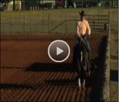 Clinton Anderson's Follow-The-Fence Exercise from Horse | EquiSearch