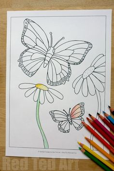 Summer Colouring Pages for Kids – Butterflies and Flowers (free printable)