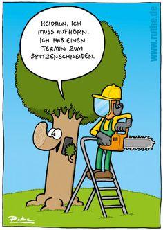 Baumspitzen-Schneiden