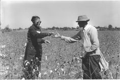 USRF - Effects of untreated syphilis in the negro male, 1932 to 1972: A closure comes to the Tuskegee study, 2004