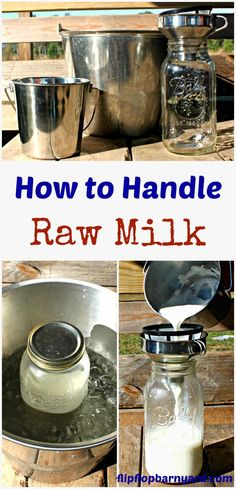 How to Handle Raw Milk. The steps involved in safely handling raw milk and for great tasting milk. Goat Milk Recipes, Goat Care, Raw Milk, Mini Farm, Mini Cows, Goat Farming, Homemade Butter, Urban Farming, Urban Gardening