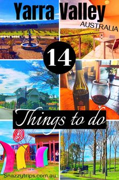 Guide To The Yarra Valley Region - SNAZZY TRIPS travel blog - Check out these 14 fabulous things to do in this scenic wine region of Victoria, a short distance from Melbourne. It's a must on any Melbourne itinerary! #yarravalleywines #yarravalley #victoriatravel #melbourneblog #snazzytrips Domaine Chandon, Australia Travel Guide, Visit Melbourne, Amazing Destinations, Travel Destinations, Balloon Flights, Air Balloon Rides, Yarra Valley, New Zealand Travel