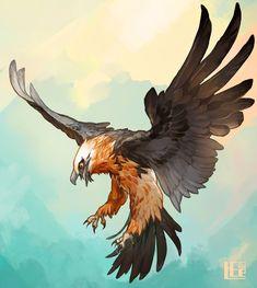 Love the bearded vulture Creature Drawings, Bird Drawings, Animal Drawings, Cool Drawings, Creature Concept Art, Creature Design, Fantasy Creatures, Mythical Creatures, Little Poney