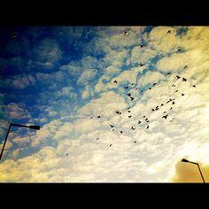 The Sky Above Berlin