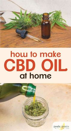 How to make CBD oil and CBD salve at home CBD oil is finally legal to buy and consume in all 50 states, but it can be expensive! Find out about the benefits of CBD oil, as well as al Calendula Benefits, Lemon Benefits, Health Benefits, Health Tips, Oil Benefits, Tomato Nutrition, Stomach Ulcers, Start Ups, Insect Bites