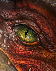 Preorder Legendary Dragons today to explore fabled dragons and discover new options for your world! Fantasy Creatures, Mythical Creatures, Dragon Eye Drawing, Arte Ninja, Beautiful Dragon, Fantasy Beasts, Cool Dragons, Dragon Artwork, Dragon Pictures