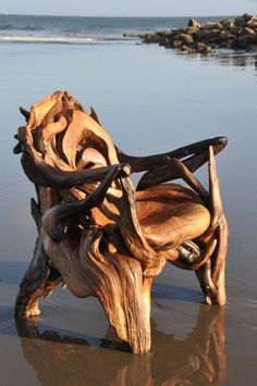 Driftwood chair - just... WOW