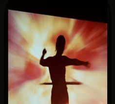 Silhouette ~and~ Backdrops include: [Photo samples coming soon for each.] > RearProjection screen and equipment for films playing in background of Dance Choreography (no shadows cast).  > Silhouette projection screen and equipment including full masked area used to introduce dances, perform or give a dramatic initiation to the event or grand entrance.  > Lit magical backdrops with interchangeable images and color tones as staging > Banner Backdrops customized to theme or celebrant