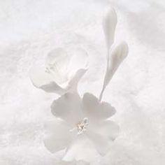 """Gumpaste Sugar Flowers - 3"""" Cherry Blossom Filler - White"""