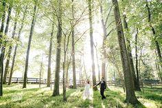 Beautiful Backyard Tent Wedding - McLean, Virginia - www.miminguyen.com
