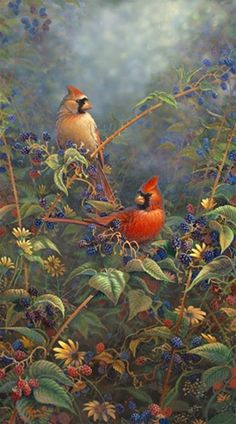 Berry Bush Cardinals by Sam Timm