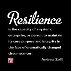 Image result for resilience quotes