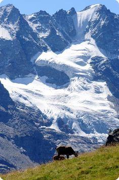 Verdadero techo de Europa, el Valle de Aosta es la región italiana con las montañas más altas de los Alpes. Italy Tours, Like A Local, Mountain Landscape, Landscape Photos, Dream Vacations, Alps, Italy Travel, Cool Places To Visit, Beautiful Landscapes