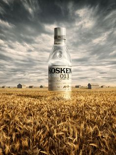 CGI collaborations for advertising industry. Food Advertising, Creative Advertising, Advertising Design, Advertising Industry, Advertising Poster, Vodka Humor, Absolut Vodka, Vodka Drinks, Camping Set